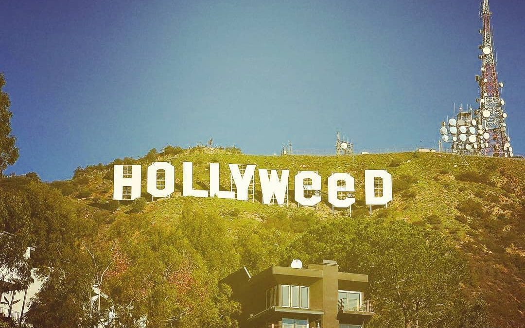 Happy 421…  Sorry I was too high and forgot yesterday. 🤣 @jesushands @hollyweed.la